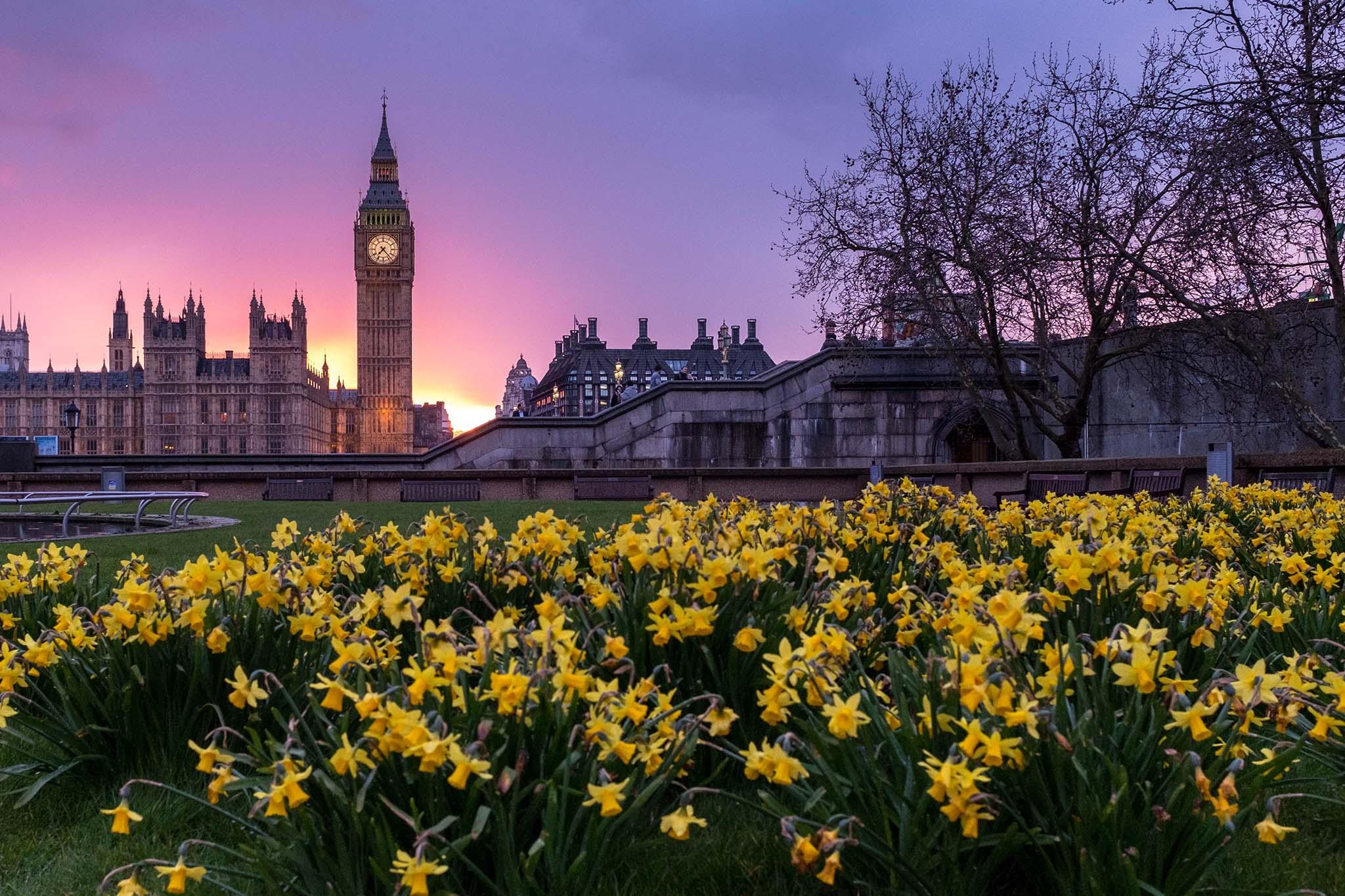 LTD w UK – najważniejsze informacje przed założeniem firmy w Wielkiej Brytanii