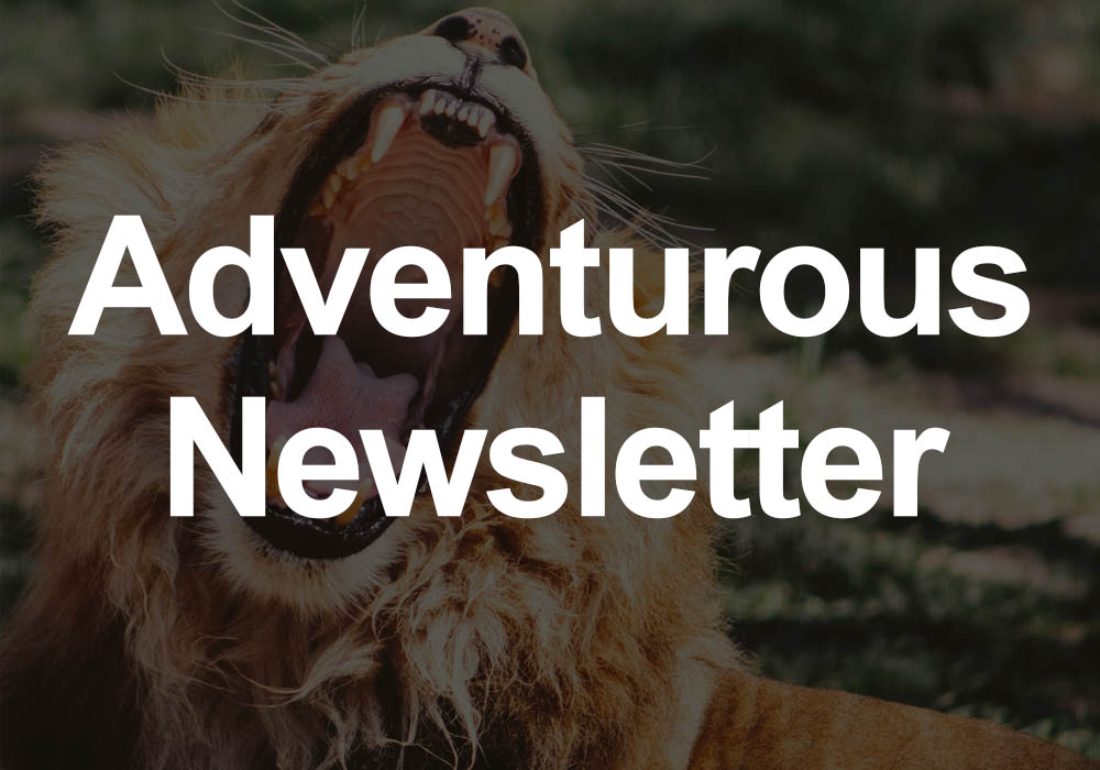 Adventurous Newsletter