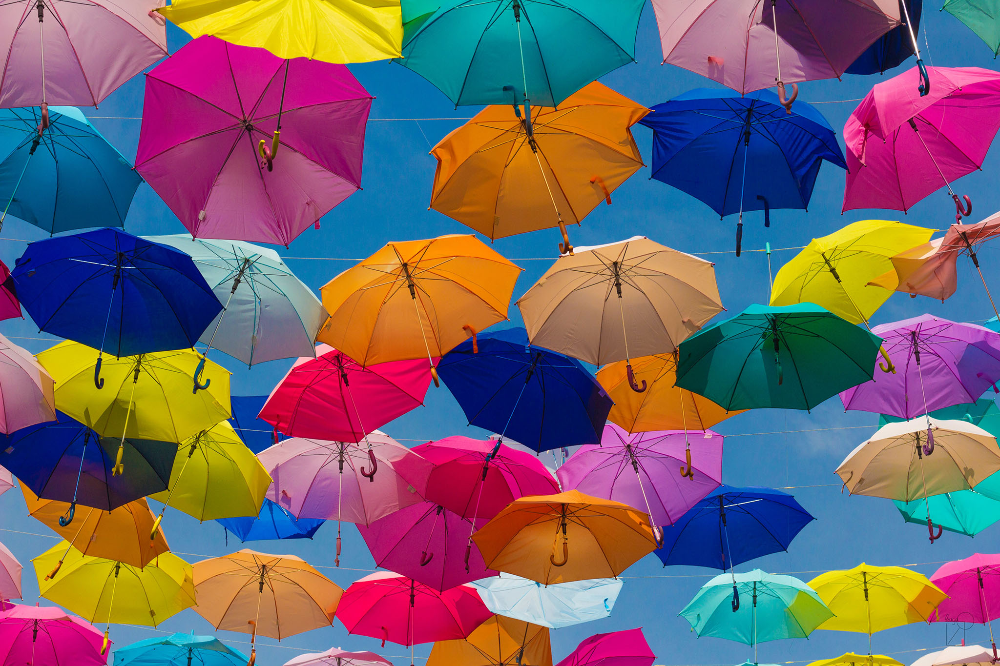 cover made of colorful umbrellas
